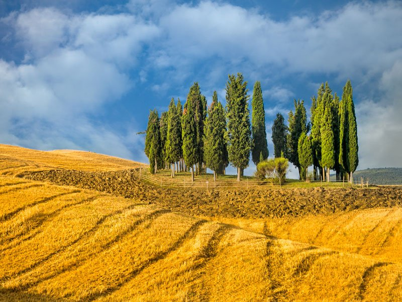 Enchanting-Tuscany_s