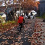 Rome cycling tour