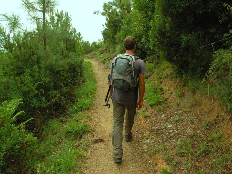 hiker-1