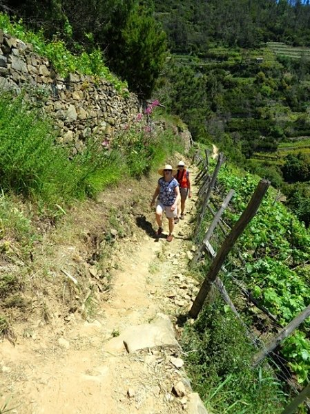 cinque terre self guided walking tours