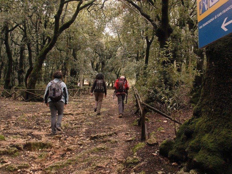 spoleto-woods--e1421310058576